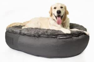 giant dog bed