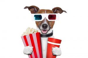 top 10 bean bag cinemas