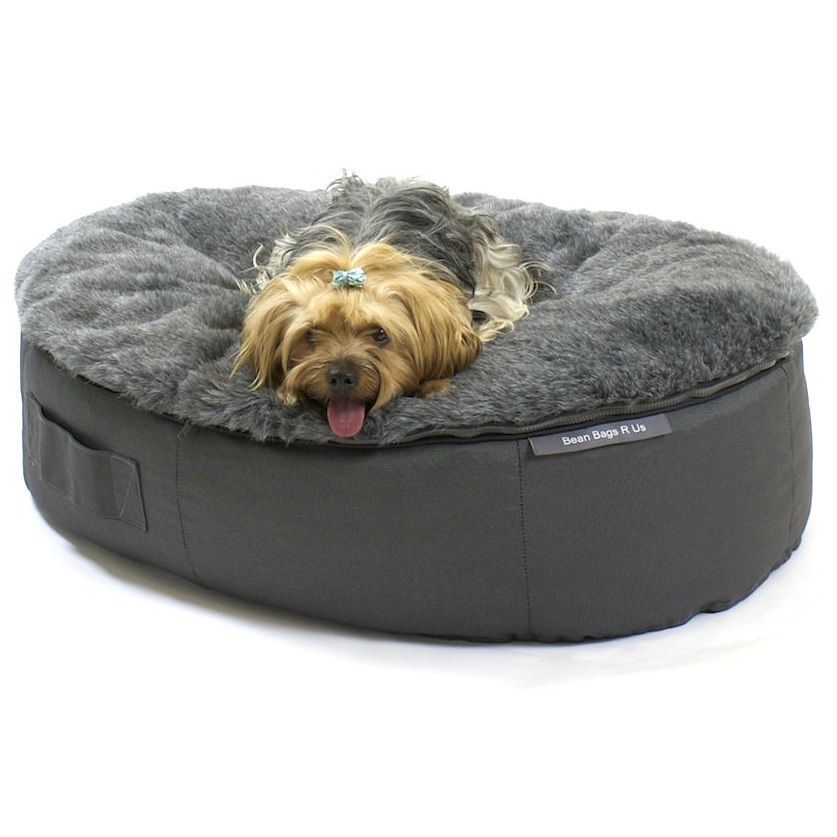The Ultimate Dog Bed Bean Bags R Us